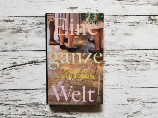 """Buchcover """"Eine ganze Welt"""" von Goldie Goldblum"""